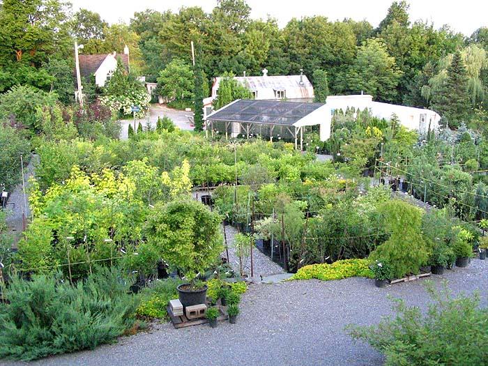 Au jardin de jean pierre centre jardin et p pini re for Centre de jardin
